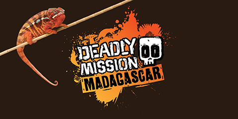 B009-2066_Deadly-Mission-Madagascar-W1-ourwork.jpg