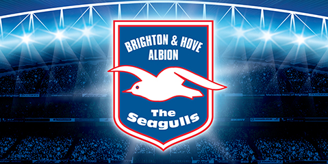 B009-2066-Brighton-and-Hove-Albion-imagery-Wide-5-ourwork.jpg